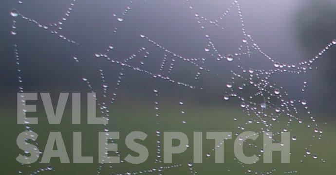 rainy-spider-web